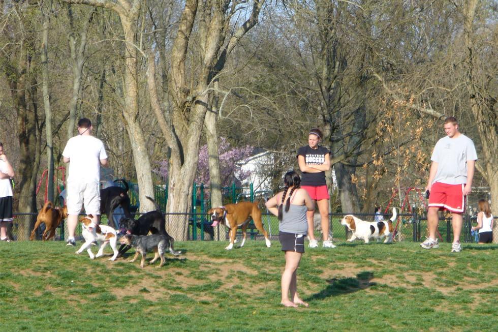 Hill's Bark Park