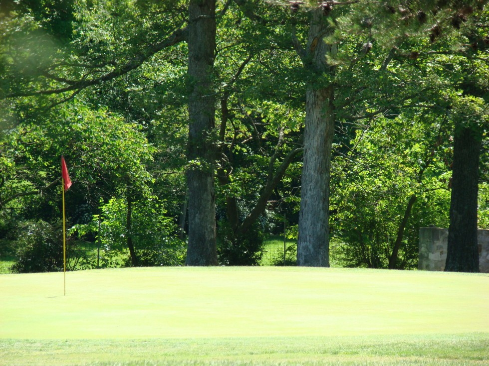 FREE Golf Clinics