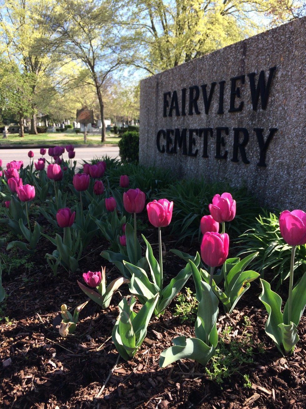 2020 Fairview Cemetery Annual Cleanup