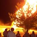 Annual Firehouse Festival