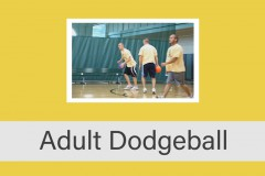 Coed Adult Dodgeball