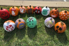 Get Ready for the Pumpkin Trail