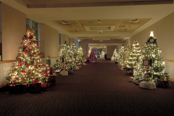 Sloan Convention Center - Christmas Trees