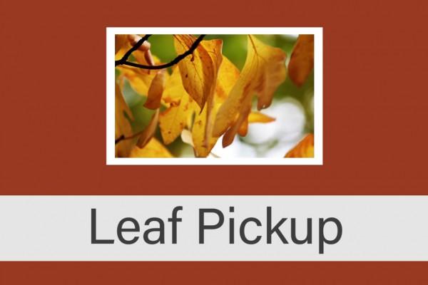 Leaf Pickup 2016