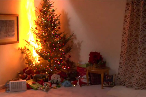 PSA: Results of a Christmas Tree Burning