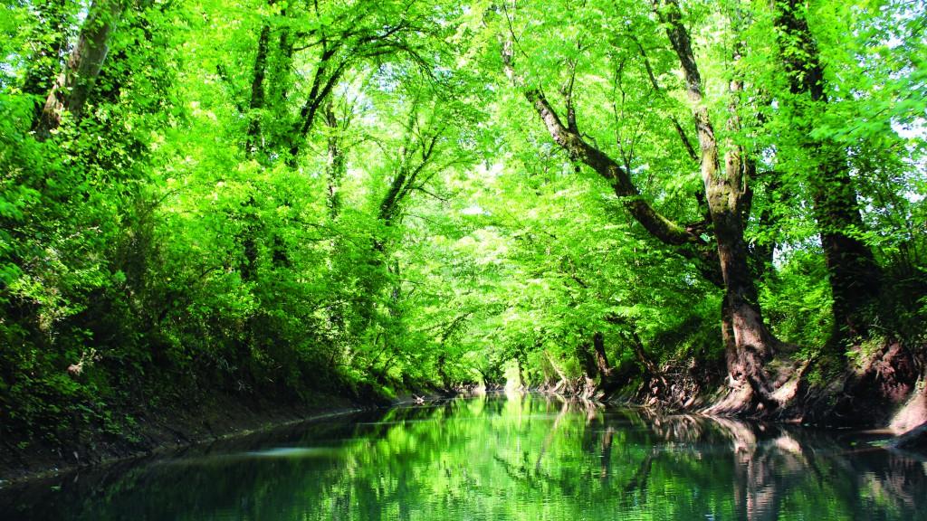 Public Works - Stormwater - Jennings Creek