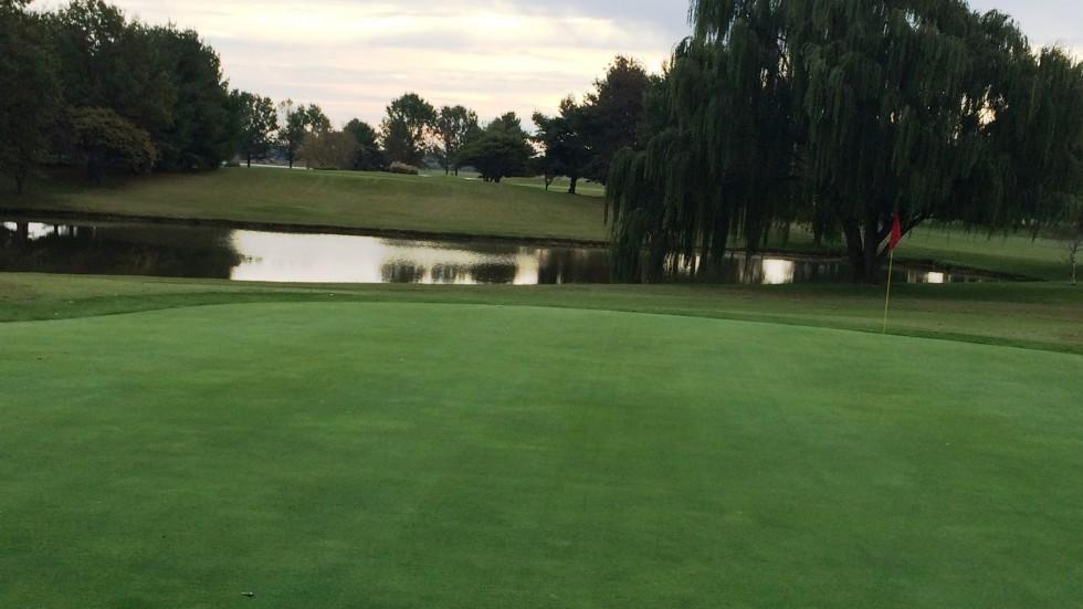 Golf - Banner Image #1