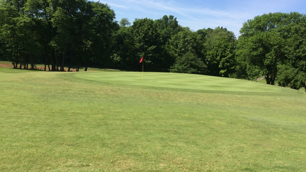 Golf - Banner Image #5